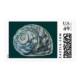 Blue Seashell Postage Stamp