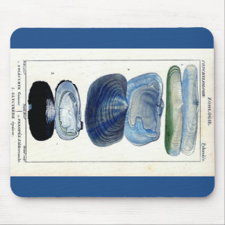 blue seashells vintage botanical French beach art Mouse Pad