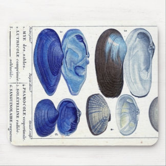 blue seashells vintage botanical French ocean art Mouse Pad