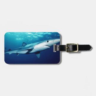 Blue Shark Bag Tag