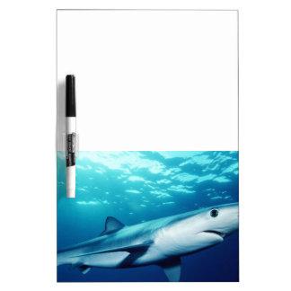 Blue Shark Dry-Erase Board