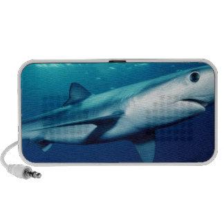 Blue Shark Mp3 Speaker