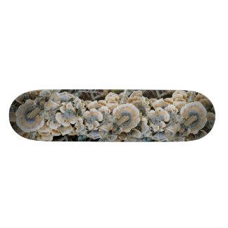 Blue Shelf Fungus Skateboard