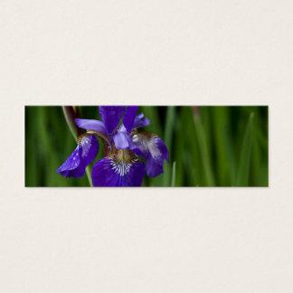 Blue Siberian Iris Mini Business Card