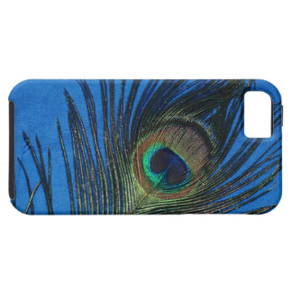 Blue Single Peacock Feather iPhone 5 Cover