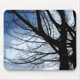Blue Skies Alder Tree Art Mouse Pads