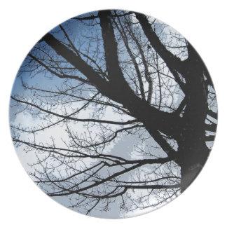 Blue Skies and Alder Tree Art Plate