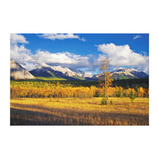 Blue skies and clouds above a meadow canvas print