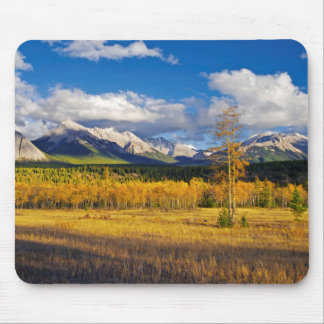 Blue skies and clouds above a meadow mouse pad