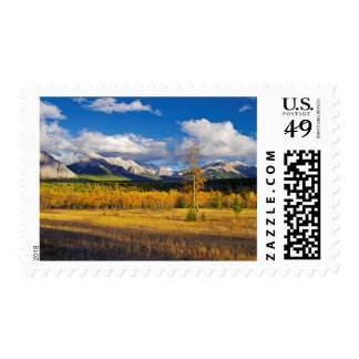 Blue skies and clouds above a meadow postage stamp