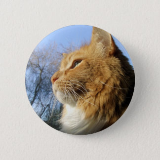 Blue Skies Cat button