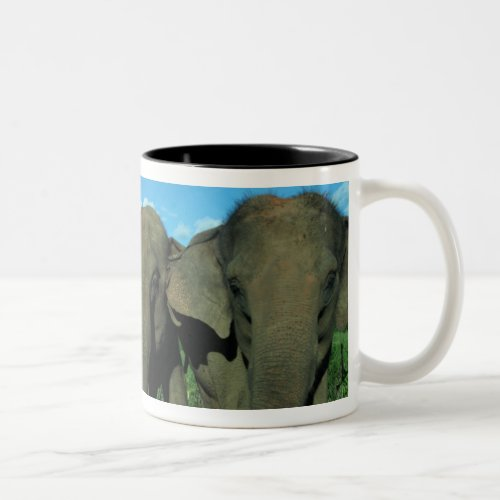 Blue Skies  Happy Maia  Guida Mug