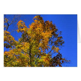 Blue Skies in Fall card