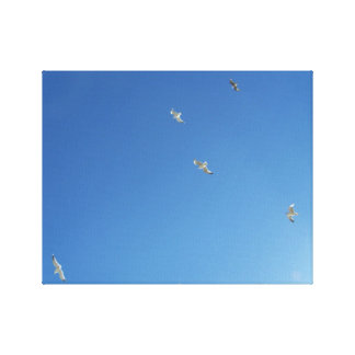 Blue Sky and Gulls Minimalist Canvas Print