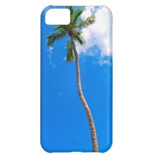 Blue Sky and Palm Tree iPhone 5C Cases