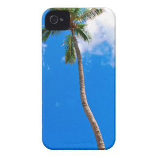 Blue Sky and Palm Tree iPhone 4 Cases