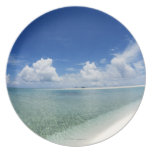 Blue sky and sea 4 party plates