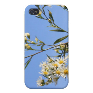 Blue Sky Bee Case Covers For iPhone 4