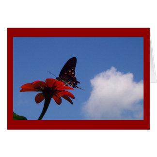 Blue Sky Butterfly! Card