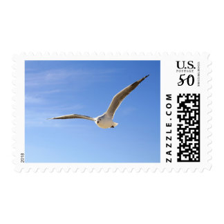 Blue Sky Clouds Flying Sea Gull Stamp