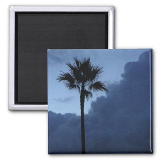 Blue Sky Lone Palm Tree Refrigerator Magnets