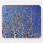 Blue Sky Mousepad
