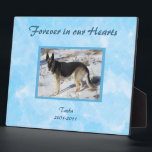 "Blue SKy Pet Memorial Photo Plaque<br><div class=""desc"">Simple and elegant pet memorial photo plaque. &quot;Forever in our Hearts&quot; on an abstract turquoise blue background. Personalize with your own pet&#39;s photo,  and easily change any of the text to suit your taste.</div>"