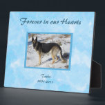 """Blue SKy Pet Memorial Photo Plaque<br><div class=""""desc"""">Simple and elegant pet memorial photo plaque. &quot;Forever in our Hearts&quot; on an abstract turquoise blue background. Personalize with your own pet&#39;s photo,  and easily change any of the text to suit your taste.</div>"""