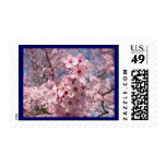 Blue Sky stamps Pink Tree Blossoms postage Floral