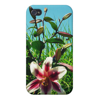 Blue Sky Summer and Flowers iPhone 4/4S Cases