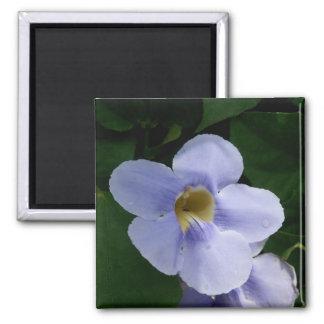 Blue Sky Vine Flower Magnet