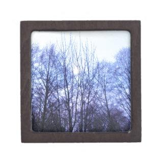 Blue Sky White Moon Black Trees Warm Colors Keepsake Box