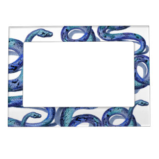 Blue Snakes Graphic Art Design Fridge Magnet Frame