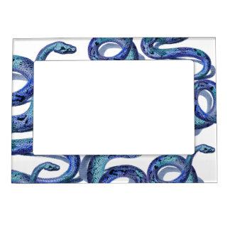 Blue Snakes Graphic Art Design Fridge Magnet Frame Magnetic Picture Frames