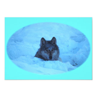 Blue Snow Timber Wolf Invitation
