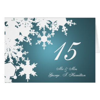 blue snowflakes winter wedding table seating card