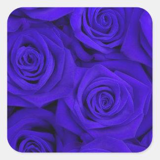 Blue Spectacular Roses Square Sticker