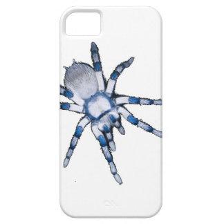 blue spider iPhone 5 case
