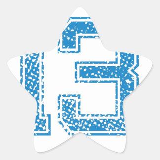 Blue Sports Jerzee Number 13 Star Sticker