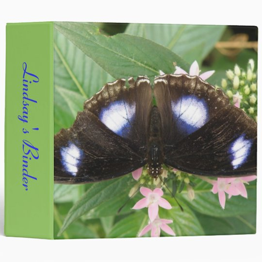 Blue Spotted Butterfly Custom Binder