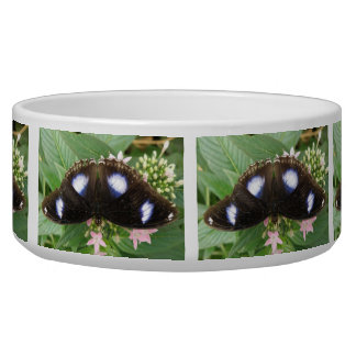 Blue Spotted Butterfly Dog Bowl