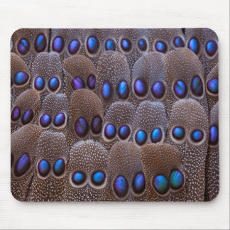 Blue spotted pheasant feather mouse pad