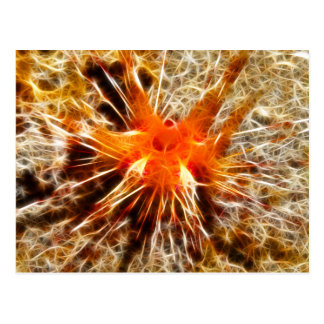Blue Spotted Urchin Postcard