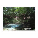 Blue Spring at Red Clay, Tennessee Post Card