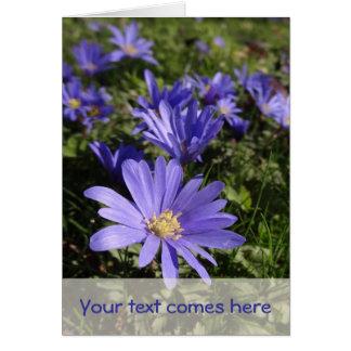 blue spring card