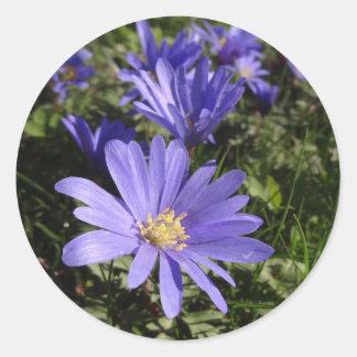 blue spring classic round sticker