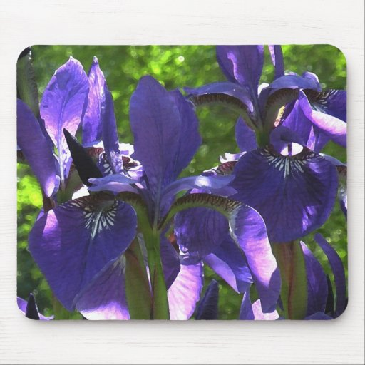 Blue Spring Iris Mousepad