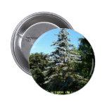 Blue Spruce Button