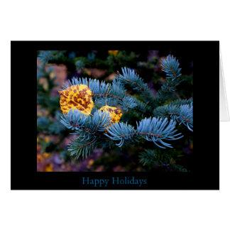 Blue Spruce Holiday Card