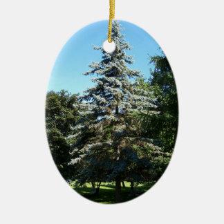 Blue Spruce Ornament